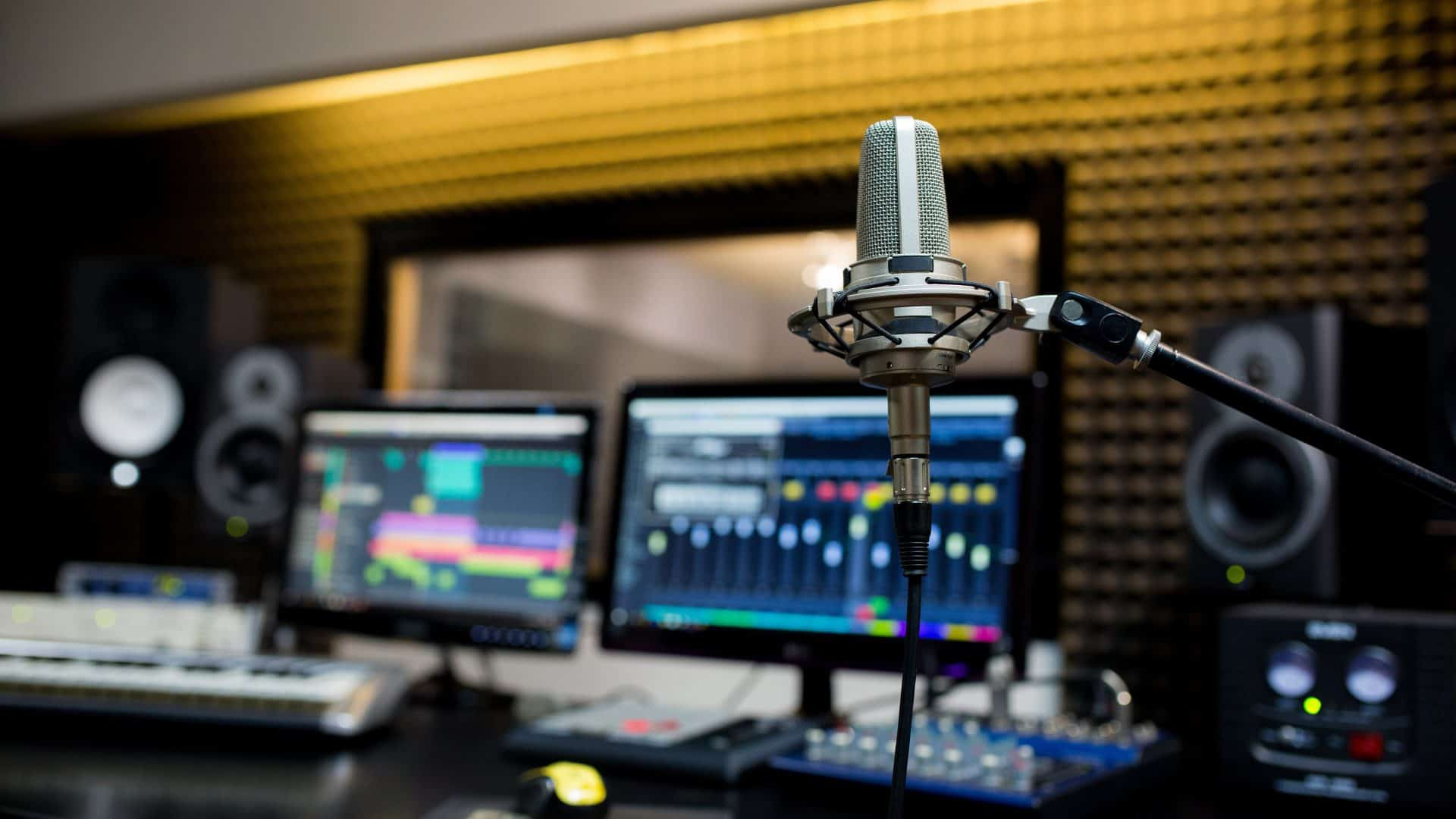 Professional microphone in the recording studio